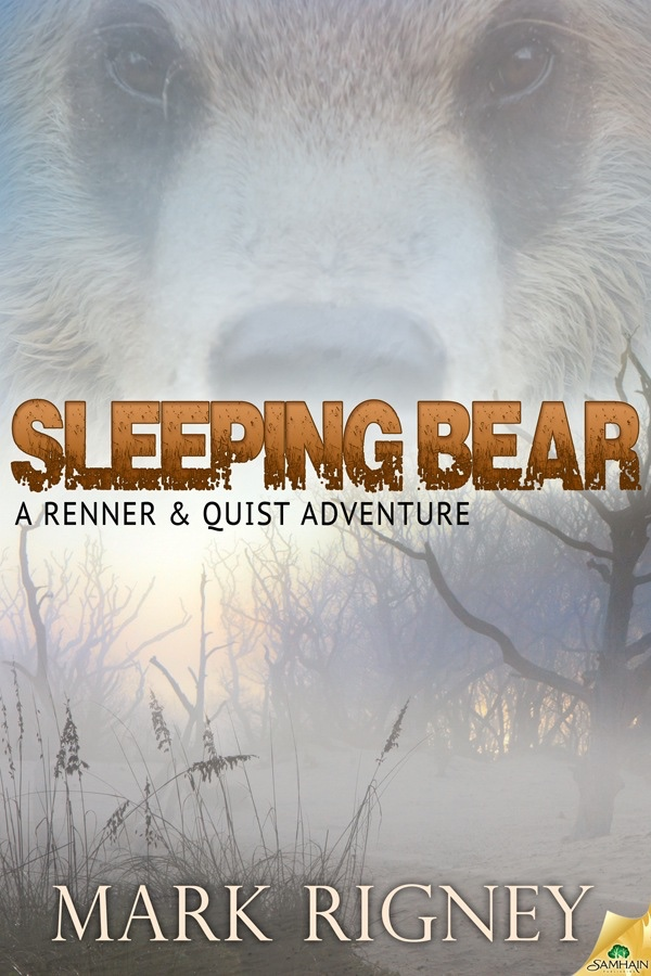 Sleeping Bear: A Renner and Quist Adventure cover